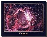 Astrology Cancer Jun 23 to Jul 23 Zodiac Wall Decor Art Print Poster (16x20)