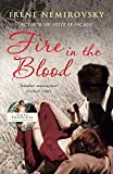 Front cover for the book Fire in the Blood by Irène Némirovsky