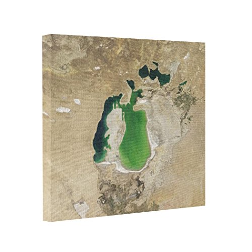 framed-canvas-satellite-view-of-the-aral-sea-in-2001-canvas-picture-prints-geography