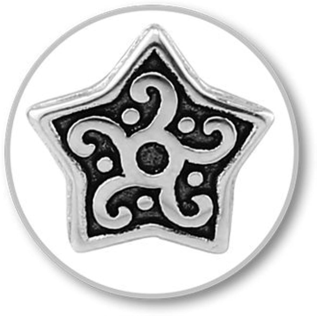 Star 16g El Morro Labret Body Piercing Jewelry Surgical Steel Internally Threaded Micro Labret