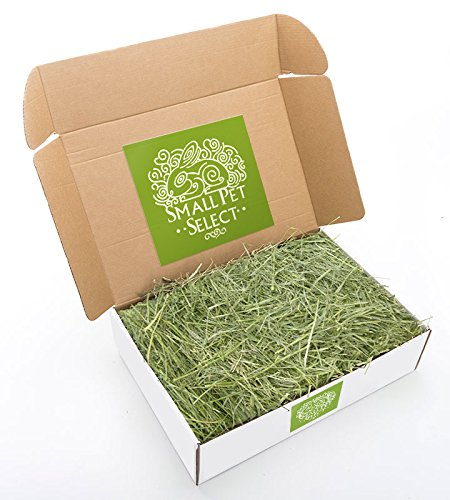Small Pet Select Orchard Grass Hay Pet Food, 10 Lb.