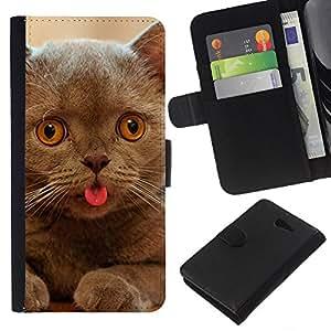 Cat Kitten Chartreux British Shorthair - la tarjeta de Crédito Slots PU Funda de cuero Monedero caso cubierta de piel Sony Xperia M2