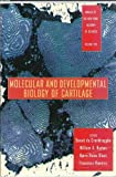 Molecular and Developmental Biology of Cartilage, Benoit De Crombrugghe and New York Academy of Medicine Staff, 1573310115