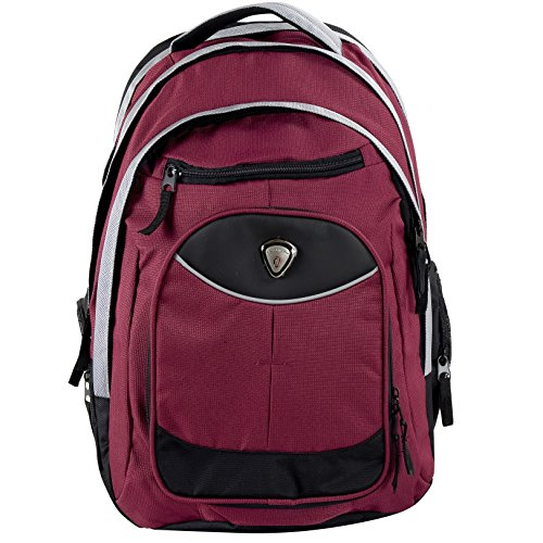 Shot Laptop Backpack - CALPAK Big Shot Deep Red 19-inch Ripstop-nylon/Polyester Deluxe Laptop Backpack