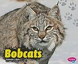 Bobcats, Jennifer L. Marks, 142964480X