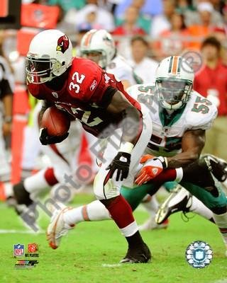 (Edgerrin James Arizona Cardinals Rushing 8x10)
