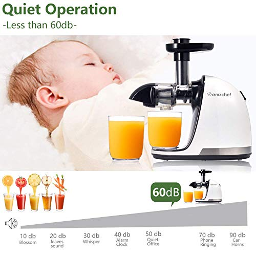 Slow Juicer,AMZCHEF Slow Masticating Juicer Extractor Professional Machine with Quiet Motor/Reverse Function,Cold Press Juicer with Brush,for High Nutrient Fruit & Vegetable Juice by AMZCHEF (Image #5)