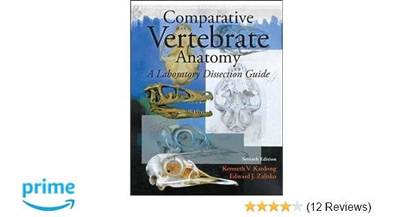 Amazon Comparative Vertebrate Anatomy A Laboratory Dissection