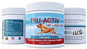 Tru-Activ Advanced Hip and Joint Supplement for Dogs| Improves Mobility & Hip Dysplasia | Glucosamine, MSM, Chondroitin, Turmeric | Antioxidants | cGMP Certified | Made in USA | 120 Savory Soft Chews by Hanzi Company LLC