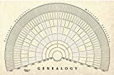 TreeSeek® Genealogy Fan Wall Chart | Large Blank Fillable Pedigree Form for Family History and Ancestry