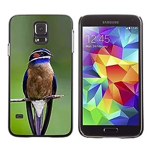 Planetar® ( Blue Bird Songbird Green Branch Feather ) SAMSUNG Galaxy S5 V / i9600 / SM-G900F / SM-G900M / SM-G900A / SM-G900T / SM-G900W8 Fundas Cover Cubre Hard Case Cover