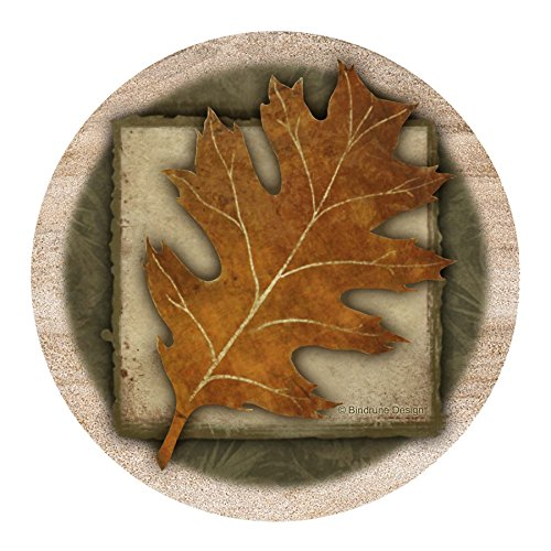 Thirstystone Drink Coaster Set Leaf product image
