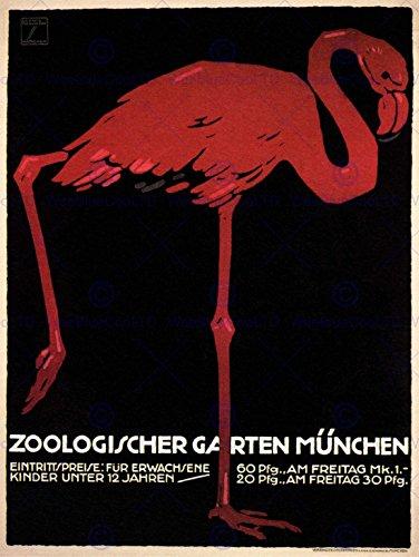 Wee Blue Coo Prints CULTURAL ZOO FLAMINGO MUNICH BAVARIA GERMANY ANIMAL BIRD EXHIBITION PRINT 12x16 inch (Bavaria Bird)