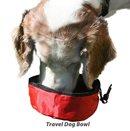 Slurps Travel Dog Bowl. Walking, Hiking! Running! Car Trips! Playtime! Easy To Carry! Easy To Use! To Go Hiking As Exercise