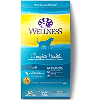 Amazon Com Wellness Complete Health Natural Dry Dog Food