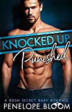 img - for Knocked Up and Punished: A BDSM Secret Baby Romance book / textbook / text book