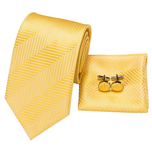- Hi-Tie Classic Gold Champagne Tie Pocket Square and Cufflinks Gift Box set Woven Silk Wedding Necktie (Gold Striped)