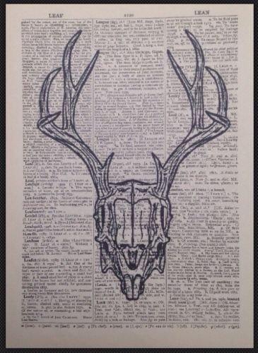 Parksmoonprints Hase Kaninchen Skull Print Vintage Wö rterbuch Seite Art Wand Bild Animal Skelett homemade