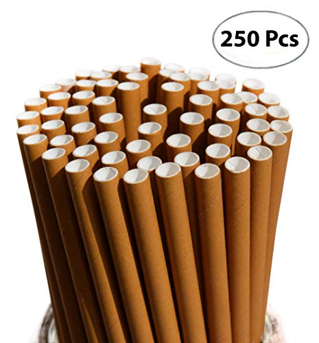 Biodegradable Paper Straws | Bulk of 250 Solid Kraft Brown Dye-Free Drinking Straws