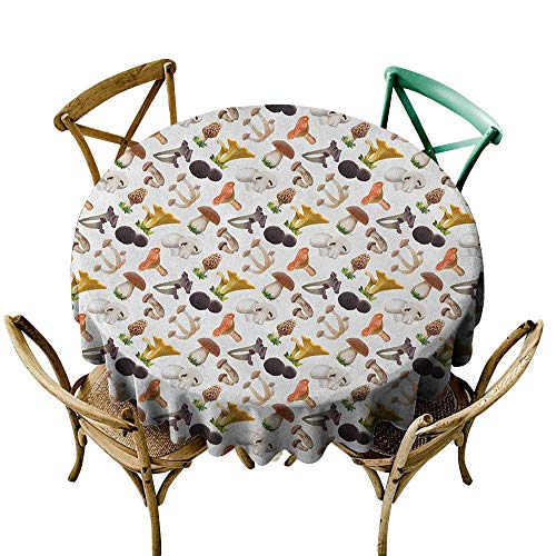 Ladybug Truffles - Wendell Joshua Picnic Tablecloth 48 inch Mushroom,Realistic Style Various Kinds of Fresh Toadstools Truffles Natural Lifestyle Cook, Multicolor Suitable for Indoor Outdoor Round Tables