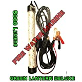 """Firewatermarine 12"""" INCH Green OR White Deluxe Underwater Fishing Light 12V 30W 150 LED 5000 Lumen Submersible Fish Lamp with 15 Foot Cord Squid, Snook, Crappie, shad, Shrimp"""