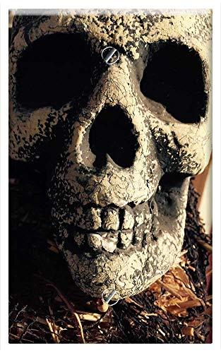 Single-Gang Blank Wall Plate Cover - Skull Halloween Halloween Background Death -