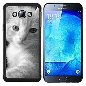 TECHCASE---Cubierta de la caja de protección para la piel dura ** Samsung Galaxy A8 ( A8000 ) ** --Gatito mullido Negro Blanco javanesa