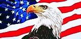 american flag towel American eagle velour brazilian beach towel 30x60 inches