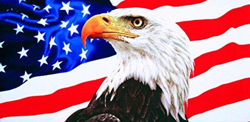 American eagle velour brazilian beach towel 30x60 inches ()