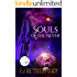 Souls of the Never: A YA Fantasy Adventure, with Time Travel and Ancient Dragons (Tales of the Neverwar Series Book 1)