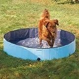Splash About Dog Pools Size: Medium, My Pet Supplies
