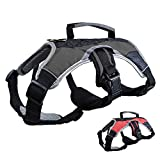 Dog Walking Lifting Carry Harness, Support Mesh Padded Vest, Accessory, Collar, Lightweight, No More Pulling, Tugging or Choking, for Puppies, Small Dogs (Black, Large), by Downtown Pet Supply