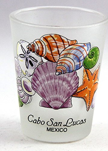 Cabo San Lucas Mexico Sea Shells Shot Glass Cabo Los Cabos Mexico