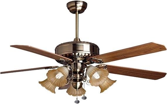 RainierLight - Ventilador de techo rústico, 5 aspas, 1 funda con ...