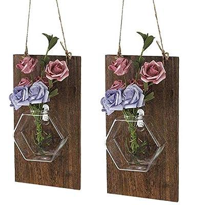 Ivolador Farmhouse Decor-Rustic Mason Jar Vase, Wall Glass Hanging Planter for Wall Background Decoration Perfect for Propagating Hydroponic Plants Home Garden Wedding Decor(Hexagonal vase X 2 Set): Home & Kitchen