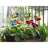 Grace your yard, garden or flower bed with a rainbow of beautiful creatures with a Set of 25 Butterfly Stakes.  You can also use them indoors to add a lovely look to potted plants.  You get a wide array of colors and designs. Each figure is on a thin...
