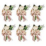 Silk Flower Arrangements HiiARug Pink Groom Boutonniere 6pcs with Pins, Artificial Groomsmen Best Man Corsage Buttonholes Rose Carnation Wedding Flowers for Wedding Party Prom Decoration (D Boutonnieres Pink 6PCS)