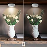 Wireless LED Puck lights, OxyLED Closet Light, Cordless Battery-Powered LED Night Light with Remote Control, Stick-anywhere Stair Lights Safe Lights for Hallway, Bathroom, Bedroom (3 Pack Round)