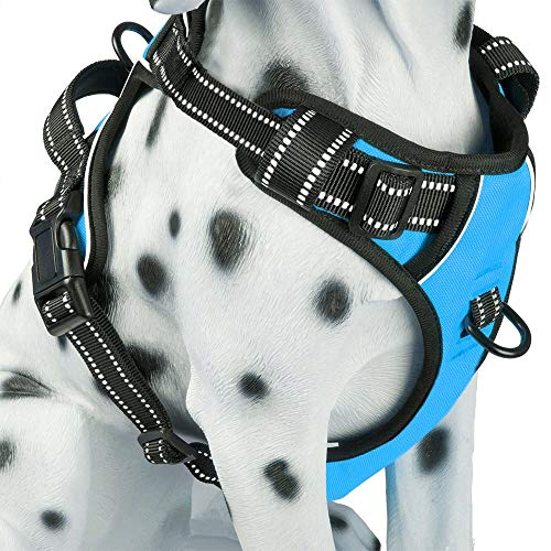 PoyPet No Pull Dog Harness, Reflective Vest Harness with Front & Back 2 Leash Attachments and Easy Control Handle for Small Medium Large Dog (Blue, Small)
