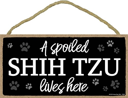 A Spoiled Shih Tzu Lives Here - 5 x 10 inch Hanging Shih Tzu Gifts, Wall Art, Decorative Wood Sign Home Decor, Shih Tzu Gifts ()