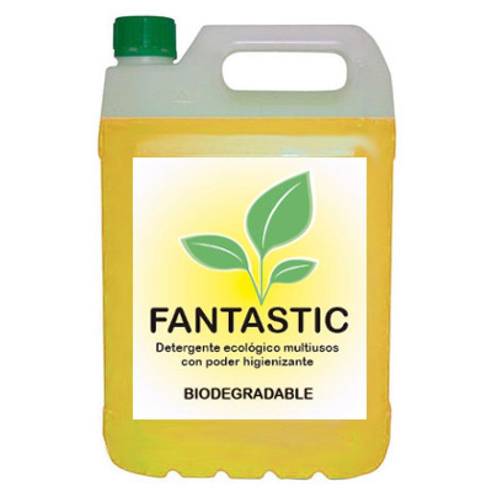 Detergente Ecológico Industrial Multiusos concentrado – FANTASTIC ...