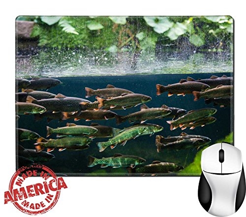 """Luxlady Natural Rubber Mouse Pad/Mat with Stitched Edges 9.8"""" x 7.9"""" IMAGE ID: 25731629 Flock of rainbow trout swimming in blue green water seen through aquarium (Tro Freshwater Fish)"""