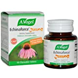 A Vogel Echinaforce Junior - Chewable - 90 Tablets by TNSkinCare