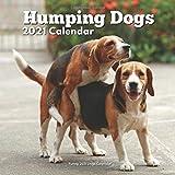 Humping Dogs: Funny Dog Calendar 2021: Lover Gag Gifts Men Women
