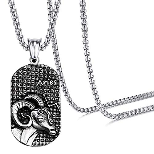 (Xusamss Hip Hop Titanium Steel Twelve Constellation Dog Tag Pendant Crystal Necklace,24