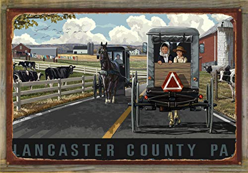 (Northwest Art Mall Lancaster County Pennsylvania Country Horse Buggy Rustic Metal Print on Reclaimed Barn Wood by Paul A. Lanquist (24