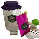 Kombucha Easy Brew Kit (No Scoby culture) - Comes With 1 Gallon Jar, Organic Sugar & Tea + More! Everything You Need to Brew Kombucha Tea In Your Own Home