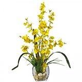 Dancing Lady Orchid Liquid Illusion Flower Arrangement (Yellow) (19''H x 15''W x 12''D)