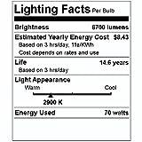 Philips Lighting 423707 ED17P Protected Metal