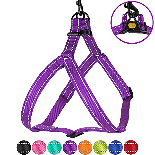 CollarDirect Reflective Dog Harness Step in Small Medium Large for Outdoor Walking, Comfort Adjustable Harnesses for Dogs Puppy Pink Black Red Purple Mint Green Orange Blue (Small, ()